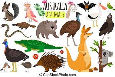 wombat, ícones, canguru, animals., emu, austrália, vetorial, animal, koala, australiano, avestruz