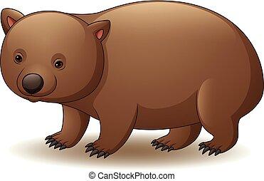 wombat, fond blanc, isolé, illustration