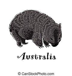 wombat, illustration., scarabocchiare, business., logotype, vettore, style., icona