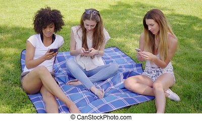 Women browsing smartphones in park - Young women sitting on...