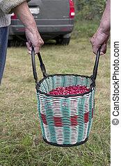 Women Carrying Berries