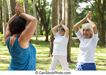 Women doing yoga in a park