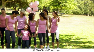 Women going on a walk for breast cancer awareness in the...