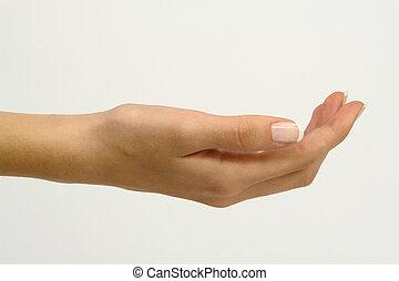 Women Hand for Presentations