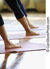 Women in gym class. - Caucasian prime adult females in yoga...