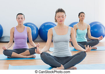 Women in meditation pose with eyes closed at fitness studio