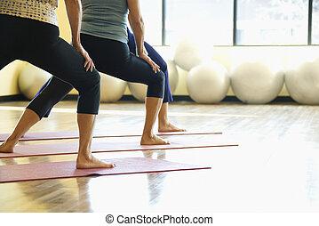 Women in yoga class. - Caucasian prime adult females in yoga...