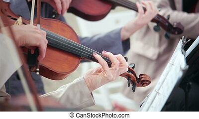 women playing stringed instruments violin, cello