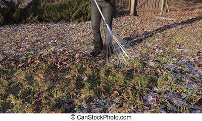 Women using rake in the edge of yard