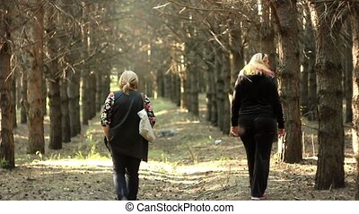 women walk along a forest trail - Walking along the so...