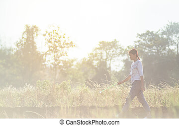Women walking in rice fields at sunset
