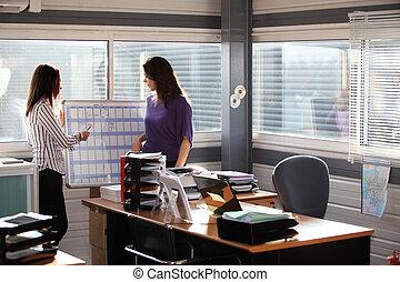 Women working at an office wall planner