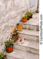Women's beige sandals on the steps with flowers in flower pots against a stone wall with shallow depth of field.