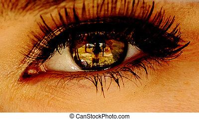 Womens brown eye close up