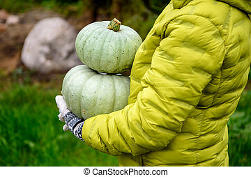 Women's gloved hands hold 2 pumpkins in the background of their country house.