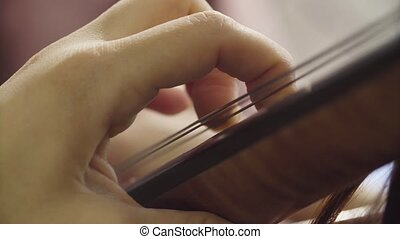 Women's hands playing string instrument - Close up of...