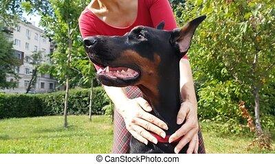 Women's hands screw her dog - Women's hands screw her big...