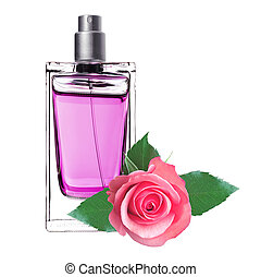 women's perfume in beautiful bottle with pink rose isolated ...