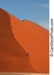 Wonderer on dune 45