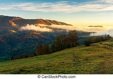 wonderful countryside in mountains. glowing fog rolls above...
