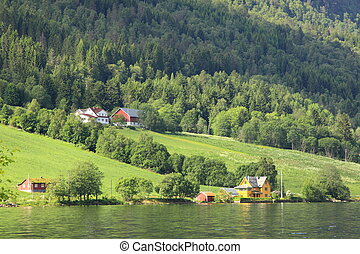 Wonderful fjord greens of norvege in spring
