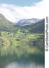 Wonderful fjord greens of norway in spring