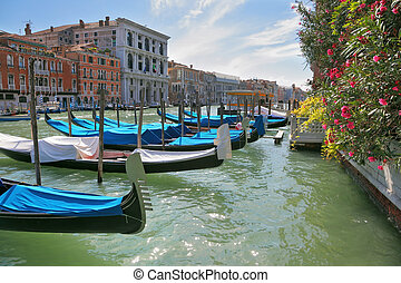 Graceful gondolas are moored - Wonderful holiday in Venice....