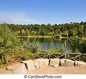 lake in the middle of a forest