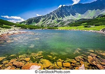 Wonderful lake in the mountains