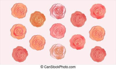 Wonderful roses video background. Moving pattern. Web banner. Rotating roses