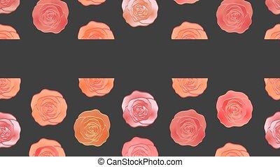 Wonderful roses video background. Moving pattern. Web banner