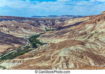 Gorge and desert canyon Ein Avdat - Wonderful spring in...