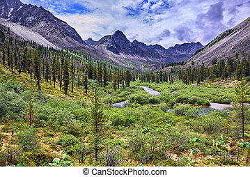 Wonderful summer landscape in the mountains of Eastern Siberia