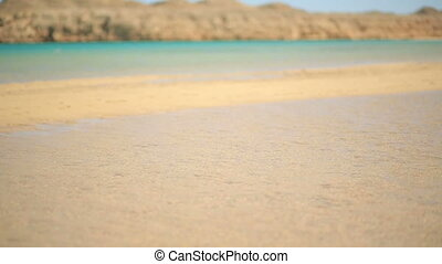 Wonderful surf on the sea in Egypt. Honeymoon