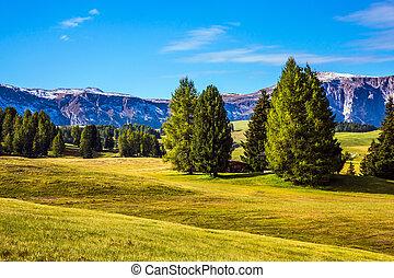 Wonderful valley in autumn