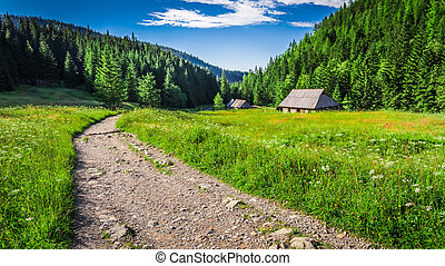 Wonderful valley in the Tatra Mountains at sunset