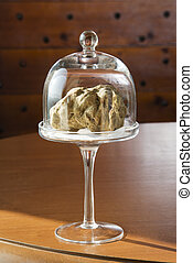 Wonderful white truffle in glass bell with pedestal