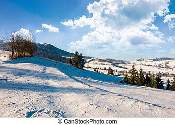 wonderful winter landscape in mountains. lovely rural...