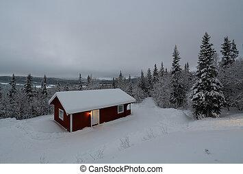 wonderland, inverno