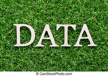 Wood alphabet in word data on artificial green grass background