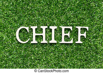 Wood alphabet letter in word chief on artificial green grass background
