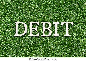 Wood alphabet letter in word debit on artificial green grass background