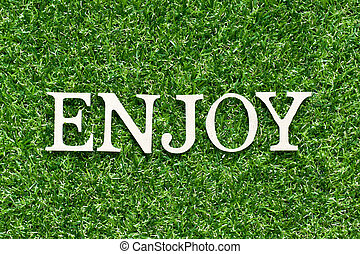 Wood alphabet letter in word enjoy on artificial green grass background