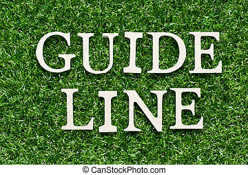 Wood alphabet letter in word guideline on artificial green grass background