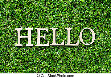 Wood alphabet letter in word hello on green grass background