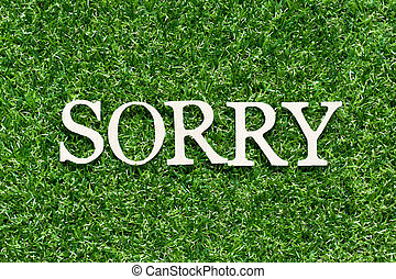 Wood alphabet letter in word sorry on artificial green grass background