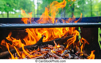 wood and fire in camp on the nature