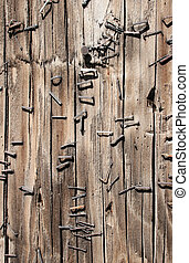 Close up of a wooden telephone pole with rusty staples.