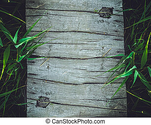 Wood background with bamboo