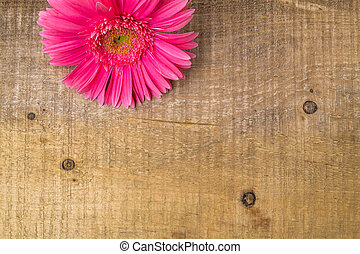 wood background wooden nature raw boards material flower...